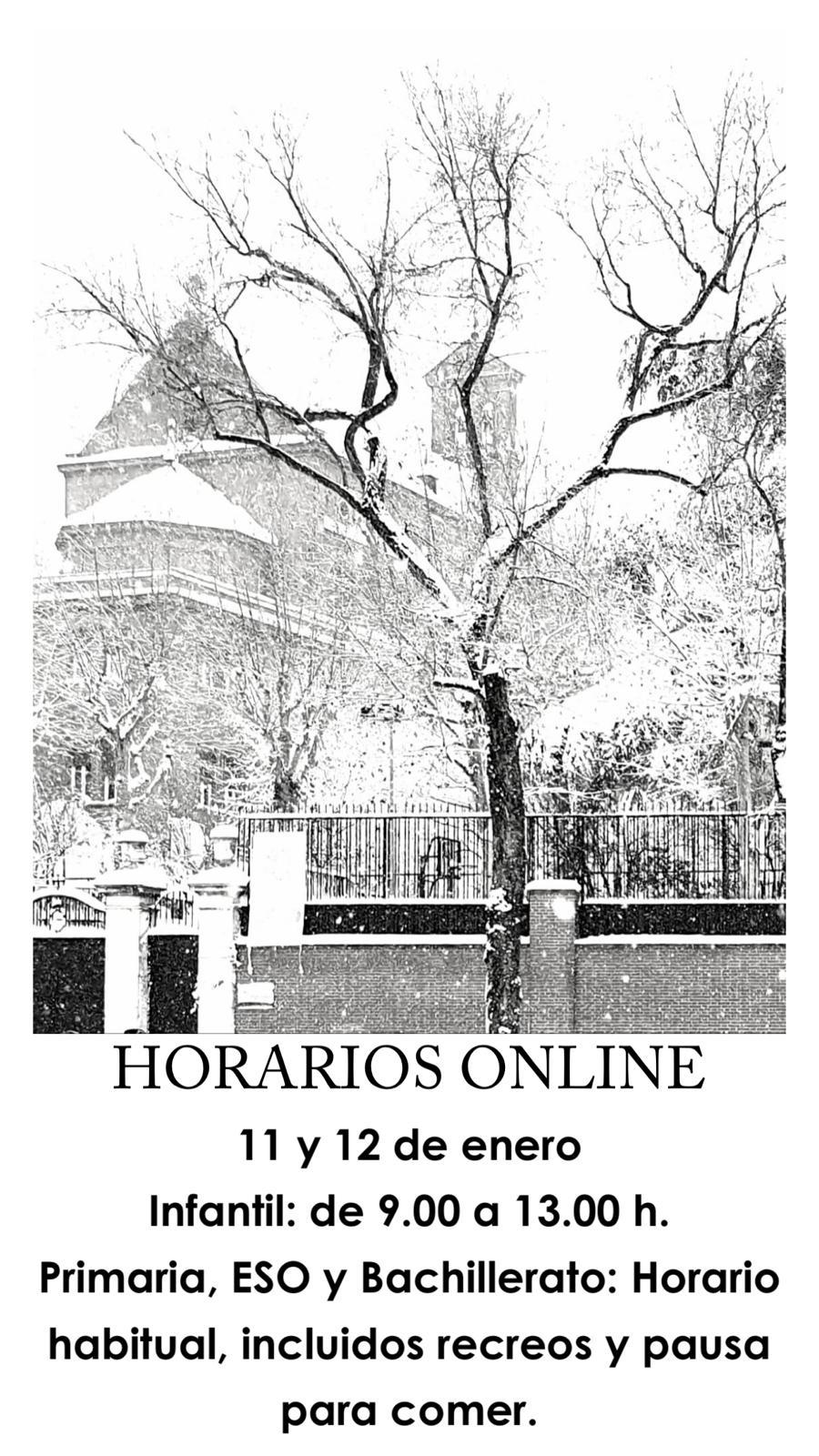 Horario clases online 11 y 12 enero